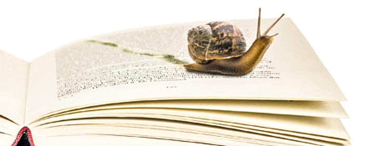 slow-reading-006export-2000-2